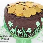 Chocolate Chip Mint Pot o' Gold Cake