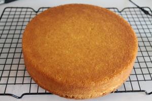 Make a 9-inch yellow cake.